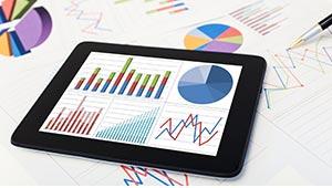 Audit et contrôle de l'actif immobilisé